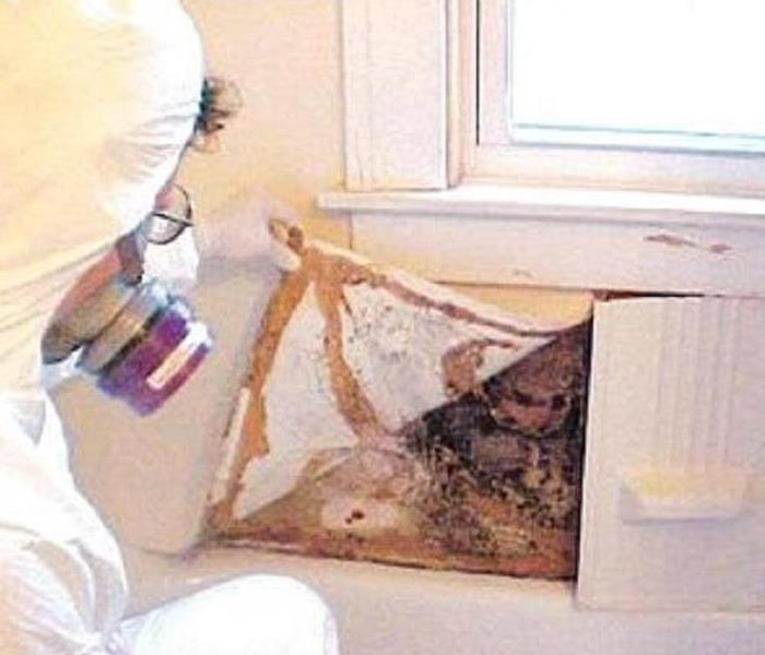 Mold Remediation Should You Have a Mold Inspection Before Purchasing a Home?