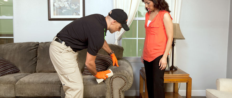 North Syracuse, NY carpet upholstery cleaning